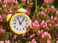 Entendiendo el cambio de hora: ¿por qué a las 2 serán las 3?