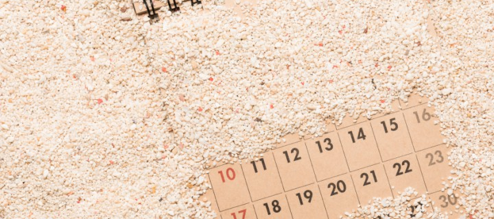 Preparando las vacaciones de verano (II): ¿Viajar en agosto es la mejor idea?
