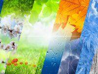 ¿Te has parado a pensar cómo puede afectar un huracán o una sequía al precio de las materias primas?