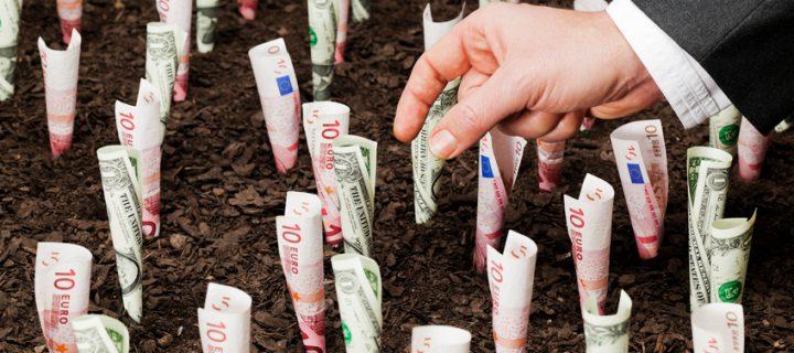 ¿Dónde invierto mi dinero? Los fondos de inversión más exóticos y raros