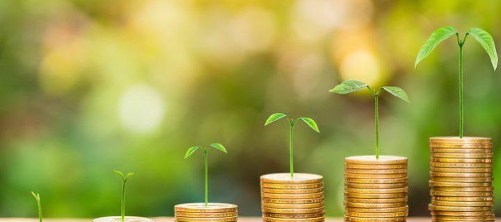 Cómo ganar dinero con el interés compuesto