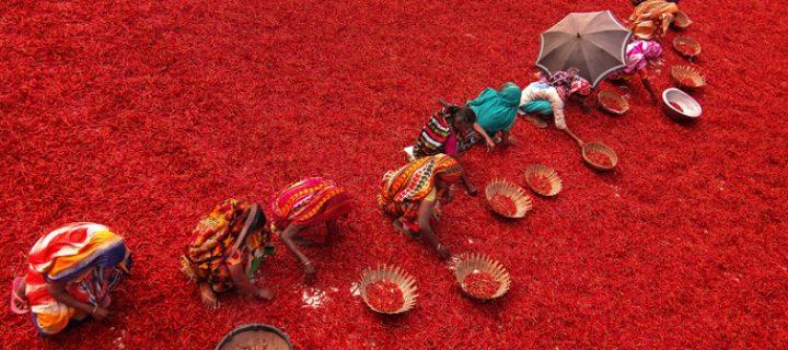 Los microcréditos como herramienta en la lucha contra la pobreza