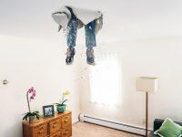 Transforma tu hogar sin arruinar tu economía: cuidado con las reformas en casa