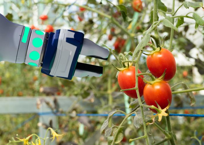 tecnología en el sector de la alimentación