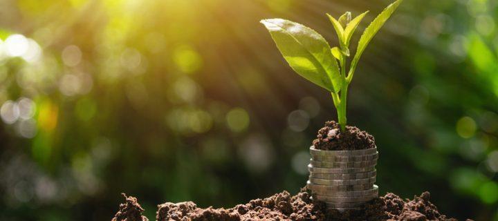 ¿Qué expectativas tener si empezamos a invertir nuestros ahorros?