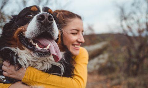 Animales de compañía: ayuda en la economía del hogar