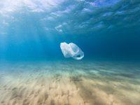 ¿Ha llegado el momento de evitar el plástico? ¿Es la hora de invertir en bioplásticos?