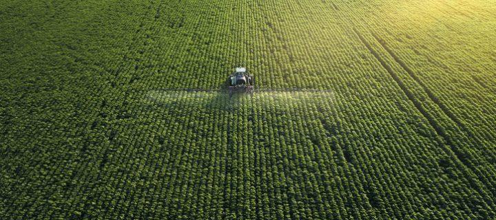 Factores que afectan al valor de los cultivos más importantes del mundo