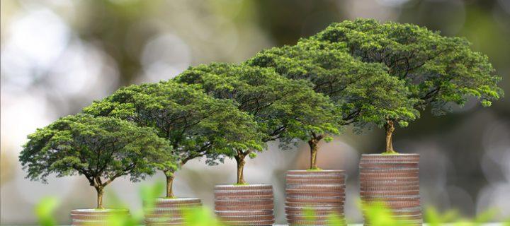 Inversión sostenible con el Dow Jones STOXX Sustainability Index