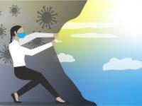Cuatro áreas de negocio a seguir, tanto si eres inversor como empresario