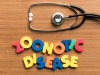 Enfermedades zoonóticas, una amenaza latente