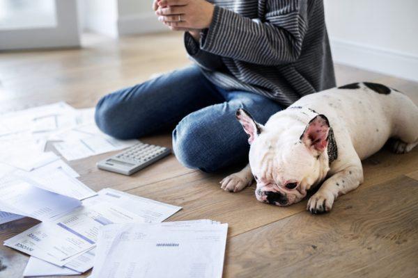 Impuestos indirectos