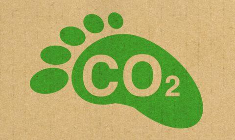 Carbonomics