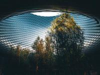 Empresas sostenibles: el futuro del mundo también importa